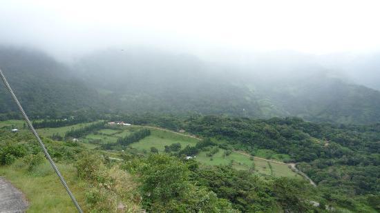 Camino Verde Bed & Breakfast Monteverde: View from outide our bedroom door