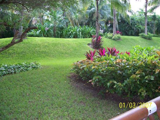 The Grand Mayan Riviera Maya: Room Location