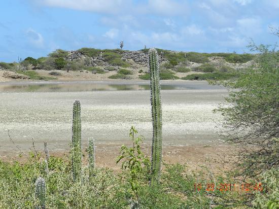 Boca Slagbaai: Washington Slagbaai National Park Bonaire