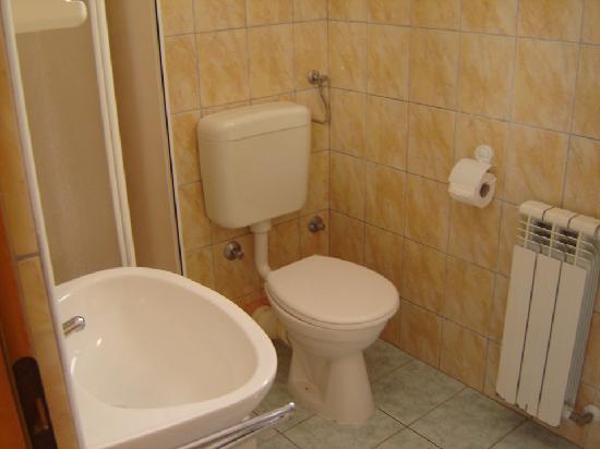 Appartments Barbara: Baño privado, algo viejo...