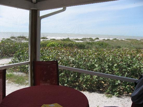 Mitchell's Sandcastles: panoramic view from screen porch