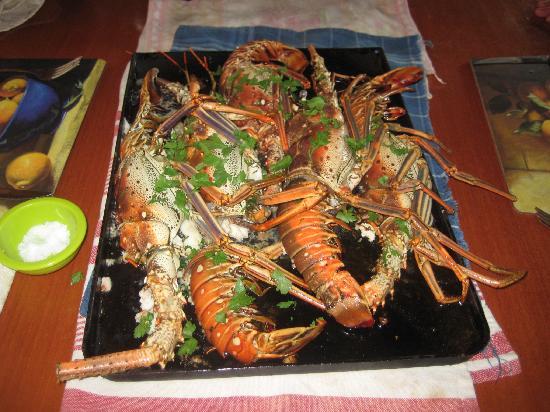 Havanna, Kuba: dinner at Verano Azul house