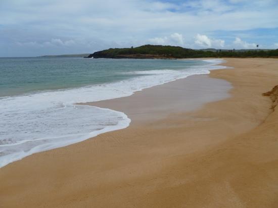 Ke Nani Kai : deserted 3-mile beach.  silky soft sand...just no people!
