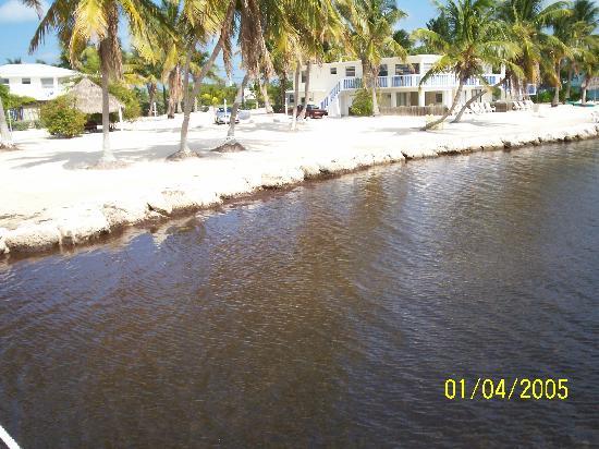 Seashell Beach Resort : chill