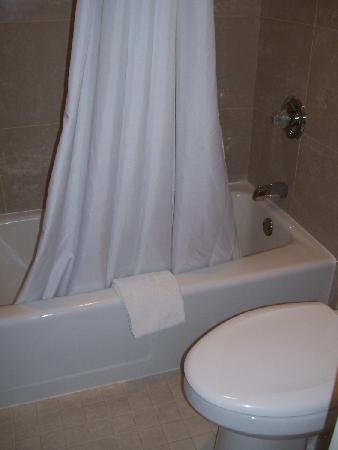 Quality Inn Gran-View: bathtub