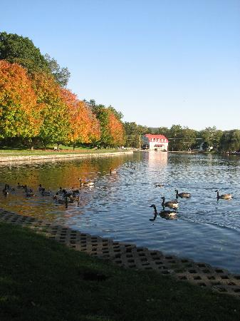 Gelinas Manor: Picturesque lake in Boiling Springs directly across the street