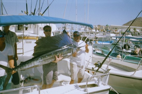ABY Charters : Oct. 2011 Sailfish