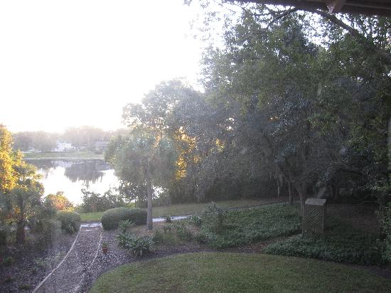 Thurston House Bed and Breakfast: View at sunrise!