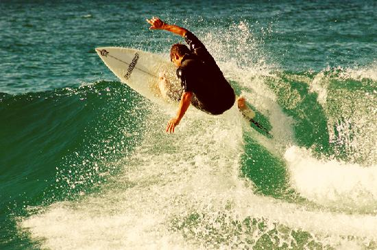 Coffs Jetty BnB: Surfing