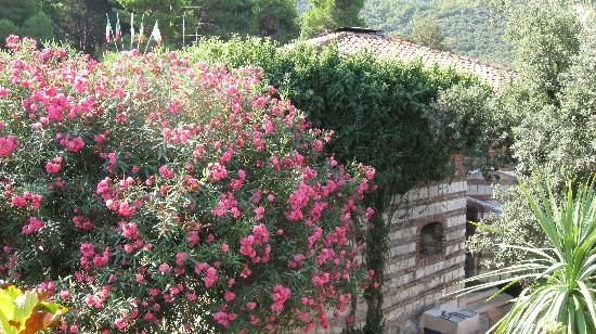 Hotel Fortino Napoleonico: Fort and Flowers