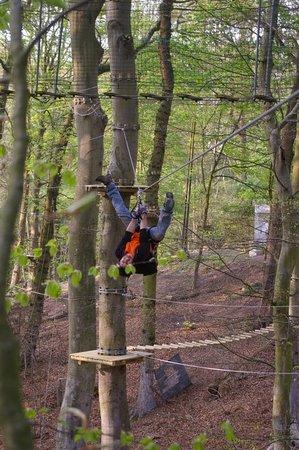 Woody Park : Tyrolienne