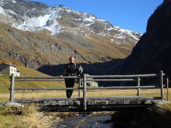Hotel delle Alpi : Val di Rezzalo