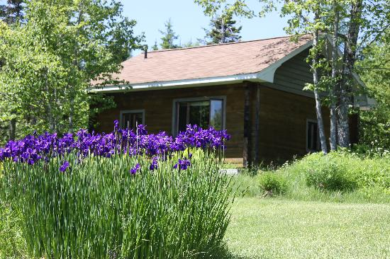 Broadwater Inn: Nestled Cottage