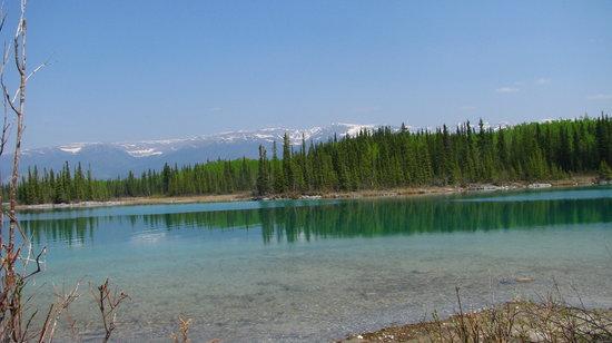 Tā Ch'ilā Provincial Park (Boya Lake)