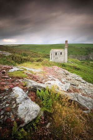 Cornish Heritage Safaris -  Tours: Prince of Wales Engine House