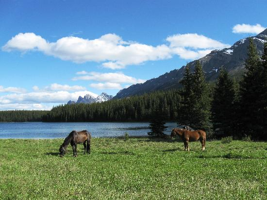 Rock Lake-Solomon Creek Wildland Park: View 2