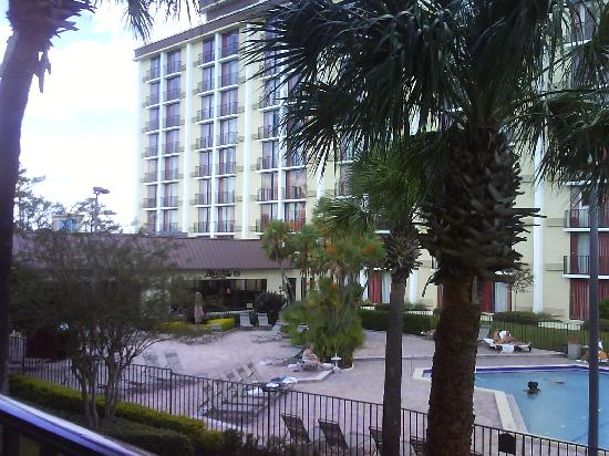 Rosen Inn: Vista da piscina.