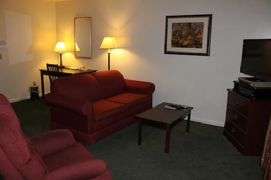 Yankee Suites Extended Stay: Living room and television - pull out couch