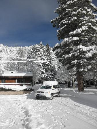 Fern Creek Lodge: After the snow storm.