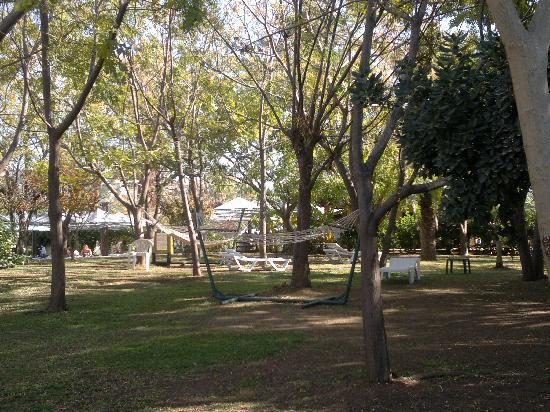 Belconti Resort Hotel : une petite partie du parc avec ses hamacs