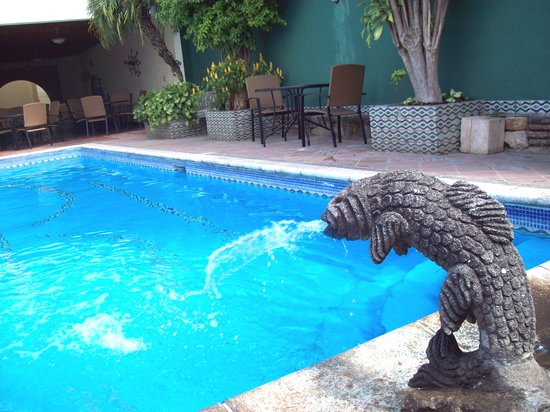 Hotel Casa del Parque: Fish fountain in the heated pool