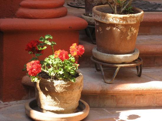 Casa Puesta Del Sol: Charming Ambience