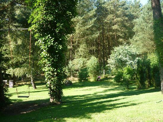 Blick von der Terrasse in den Garten zum Park hin