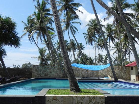 Weligama Bay Resort: Pool