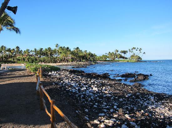 Fairmont Orchid Hawaii Turtle Beach