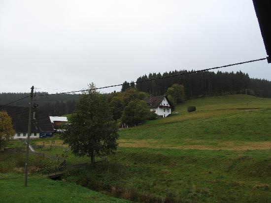 Hotel-Gasthof Hirschen: The view from the balcony