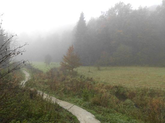 La Truite d'Argent : De tuin in de ochtendmist