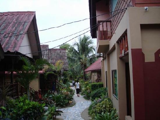 Coconut Grove Samui: 4