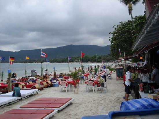Coconut Grove Samui: 6