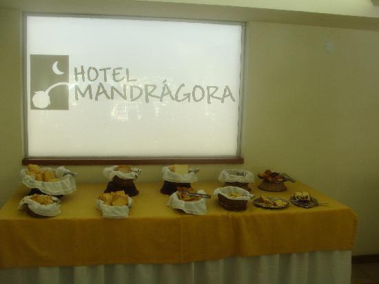 Hotel Mandragora: Parte del desayunador