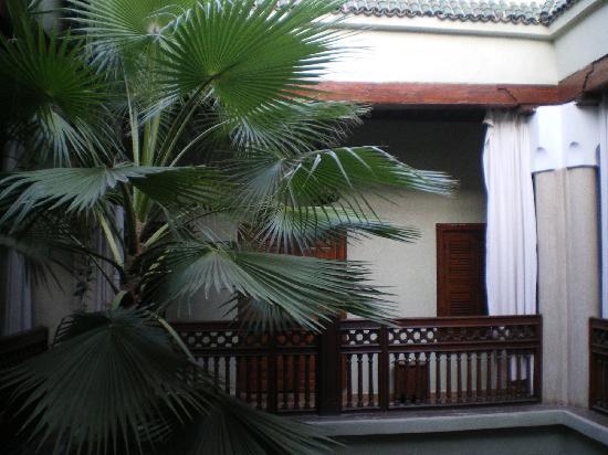 Riad Pedronoor: Jardin