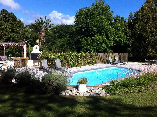 La piscine picture of stannards guest lodge knysna for La piscine review