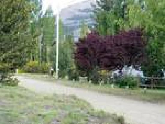 Cabanas Luna de Ayelen: Acceso a las cabañas