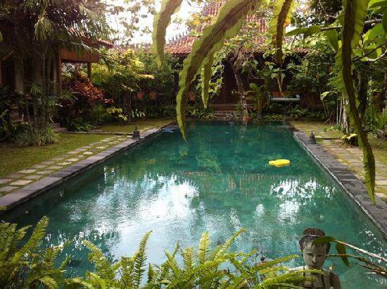 Villa Kampung Kecil : Kampung Kecil Pool