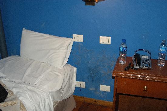 Hotel Dos Congresos: Mold on the Wall