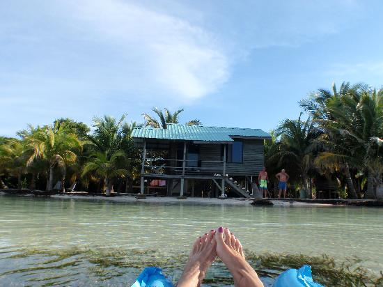 Glovers Reef Atoll, Belice: View of cabana 4 from the water