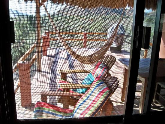 Baja Bungalows: New House Back