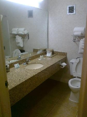 Comfort Inn & Suites: Standard bathroom