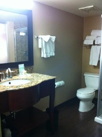 Holiday Inn Hotel & Suites Anaheim - Fullerton: bathroom