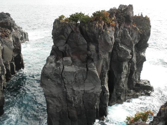 切り立った岩 - Picture of Jogasaki Coast, Ito - TripAdvisor