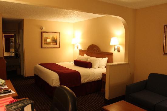 BEST WESTERN, Brady Inn: Room with King Bed