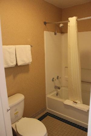 Best Western Brady Inn : Bathroom in Room with King Bed