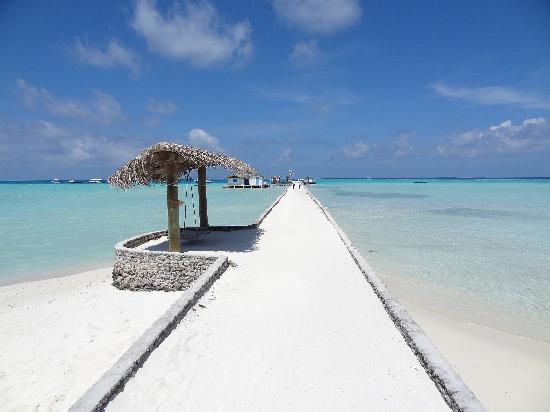 Rihiveli by Castaway Hotels & Escapes: Le ponton, bienvenu à Rihiveli