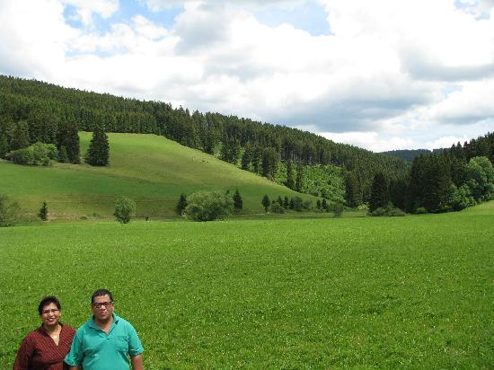 Titisee-Neustadt, Alemania: The Picturesque Scenery on the way to the Lake
