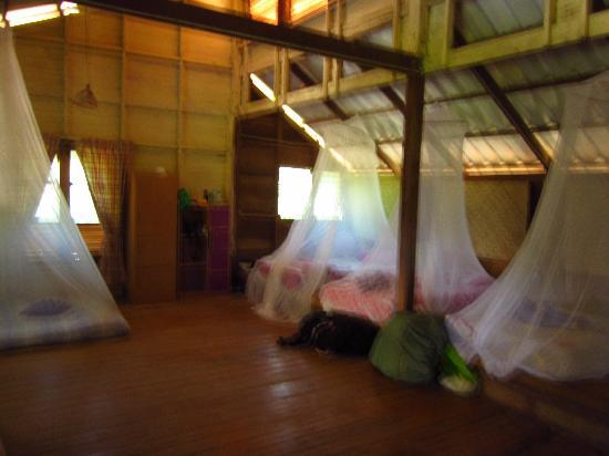 Sonya Restaurant & Guesthouse : Common dorm