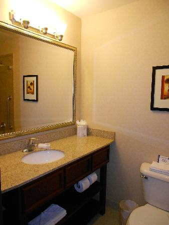 Comfort Inn & Suites Henderson: bathroom